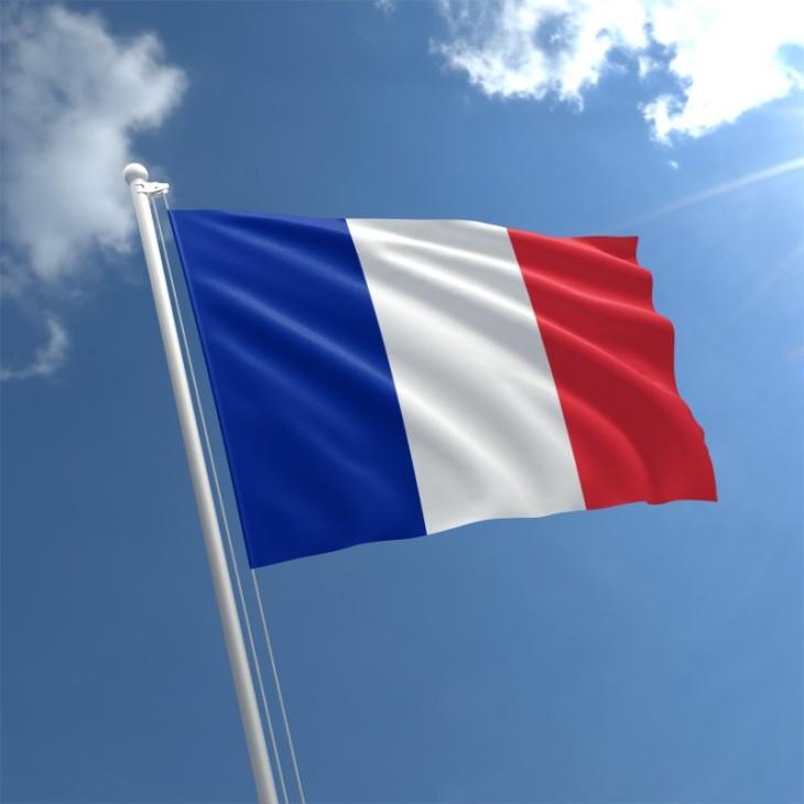 france-flag-std
